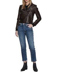 Walter Baker Liz Leather Crop Moto Jacket - Brown