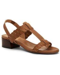 Aquatalia Haiden Leather T-strap Woven Slingback Block Heel Sandal - Brown