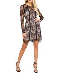 Astr Lace Body-con Dress - Black