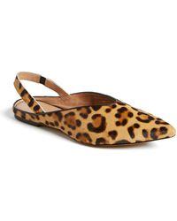 Halogen - Sadie Genuine Calf Hair Pointed Toe Slingback Flat - Lyst