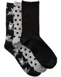 Hot Sox - Kittens - Pack Of 3 - Lyst