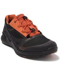 Ecco Biom Omniquest Sneaker - Multicolor