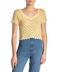 Lush Pointelle Scalloped Trim Knit Shirt - Multicolour
