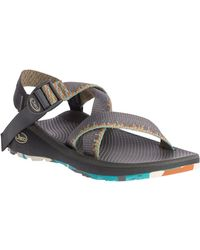 Chaco Z/cloud Sandal - Multicolor