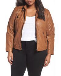 Bernardo - Leather Moto Jacket (plus Size) - Lyst