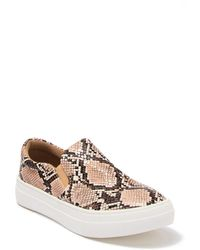 Matisse Harry Snakeskin Embossed Slip-on Sneaker - Multicolour