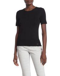 T Tahari Scallop Edge Ribbed T-shirt - Black