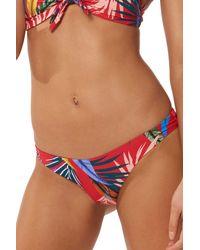 Red Carter - Elle Print Bikini Bottoms - Lyst