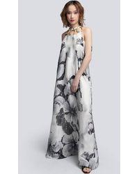 Akosée Iris Halterneck Maxi Dress In Flower - Black
