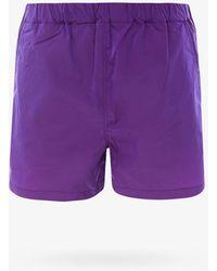 Hevò Swim Trunks - Purple