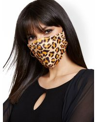 New York & Company Leopard-print Face Mask - Multicolor
