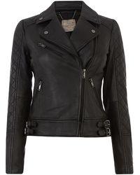 Oasis Premium Leather Jacket - Black