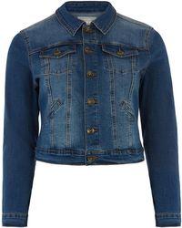 Oasis Curve Nancy Denim Jacket - Blue