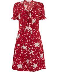 Oasis Floral Tie Neck Skater Dress - Red