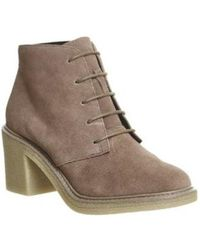 Office - Lulu Lace Up Ankle Boots - Lyst