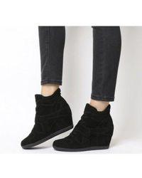 Ash Bowie Hi Top Wedge Sneaker - Black
