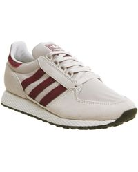 Adidas Lyst Women's Forest Grove White In qrqZ6wB