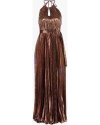 Maria Lucia Hohan Delphi Metallic Striped Plissé Jumpsuit - Multicolor