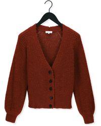 FABIENNE CHAPOT Cognac Vest Starry Cardigan - Bruin