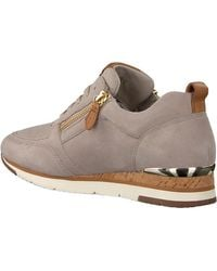 Gabor Taupe Lage Sneakers 431 - Bruin