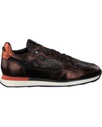 Floris Van Bommel Braune Sneaker Low 85312
