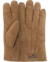 Warmbat Bruine Handschoenen Gloves Men