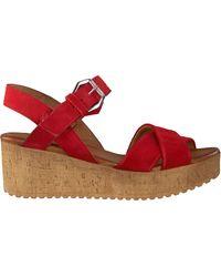 Omoda - Rote Sandalen 722017 - Lyst