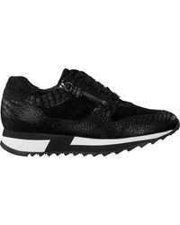 HASSIA Zwarte Lage Sneakers Madrid