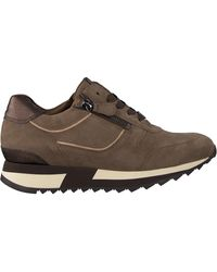 HASSIA Taupe Lage Sneakers Madrid - Bruin