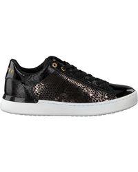 Cruyff Schwarze Classics Sneaker Low Patio Lux