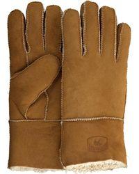 Warmbat Cognac Handschoenen Gloves Women - Meerkleurig