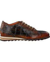 Harris Cognac Lage Sneakers Cardiff - Bruin