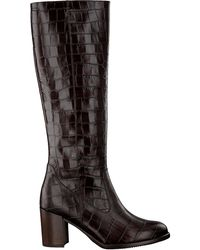 Gabor Braune Hohe Stiefel 569.1
