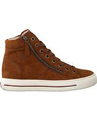 Paul Green Cognac Hoge Sneaker 4024 - Bruin