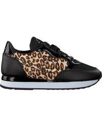 Cruyff Classics Sneaker Low Parkrunner - Schwarz