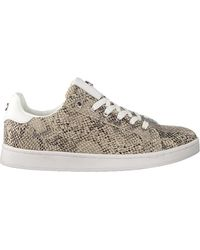 Mexx Taupe Lage Sneakers Eeke - Naturel