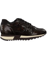HASSIA Braune Sneaker Low Madrid