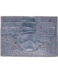 Okapi Card Holder / Amos Blue Jean & Parchment Zebra Ostrich Shin