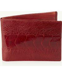 Okapi Billfold Wallet / Flame Red Ostrich Shin