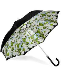 Aspinal of London Beautiful Soul Stand Up Umbrella - Black