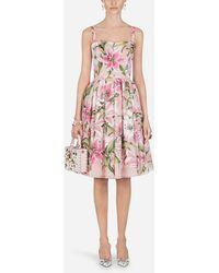 Dolce & Gabbana - Floral-print Organza Dress - Lyst
