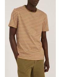 ARMEDANGELS Jaago Stripes Burnt Olive-sorbet-off White - Brown