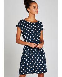 Apricot Druckkleid »Seashell Tie Back Dress« mit Rückenschleife - Blau