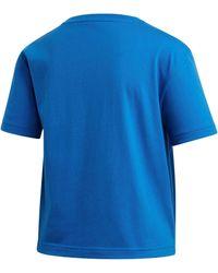 adidas Originals T-shirt Must Have Gr Tee Ii - Blauw