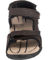 Geox Komfort-Sandalen - Braun