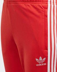 adidas Originals Trainingshose »SST Trainingshose« adicolor;Superstar - Rot