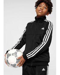 adidas Originals Trainingsanzug »YOUTH BOY TRACKSUIT TIRO« (Set, 2-tlg) - Schwarz