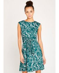 Apricot Druckkleid »Feather Leaf Print Tie Front Dress« - Grün
