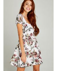 Apricot Spitzenkleid »Roses Lace Skater Dress« mit Rosendruck - Weiß