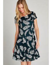 Apricot Meshjurk Fern Rubber Print Skater Dress - Meerkleurig